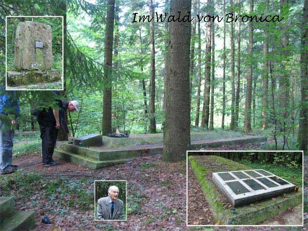 Wald von Bronica