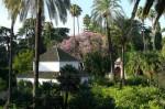 Sevilla: Königspalast Alcazar, Garten